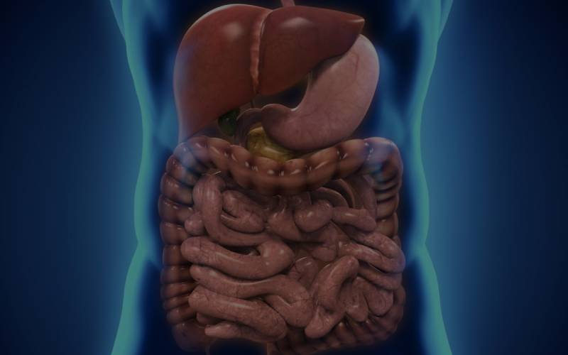 gastrointestinal, liver and pancreatic disorder treatment in mumbai